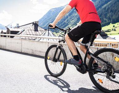 Vrste e-koles